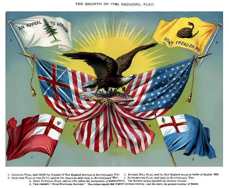 Gadsden Flag Nebraskaenergyobserver